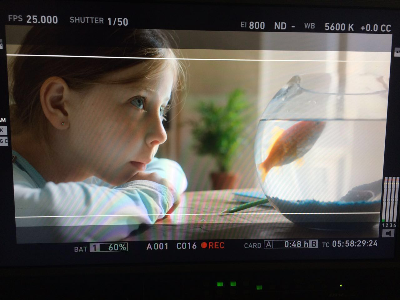 Deutsch Israelischer Film mit Lilli Ray